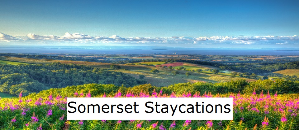 Somerset Staycations